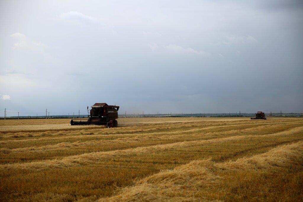 Крестьянско фермерское хозяйство