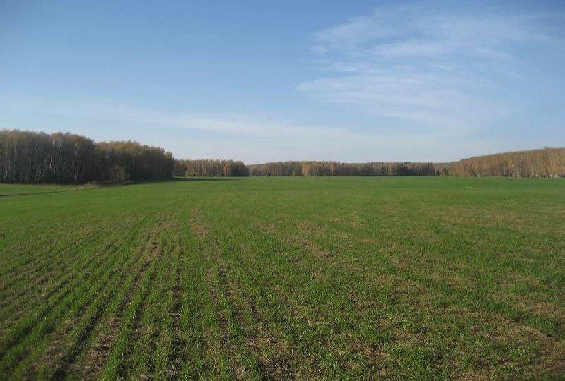Земельный участок для хозяйства