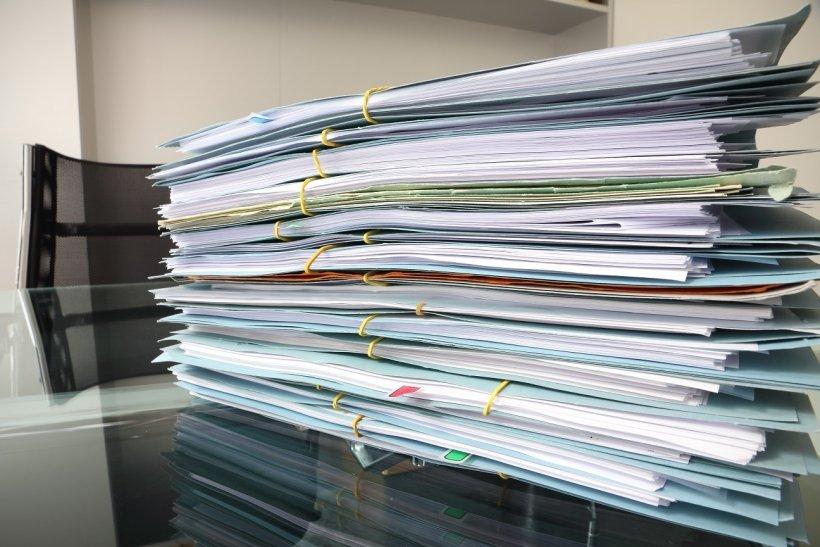 Отчетная документация
